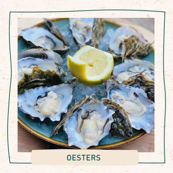 Oesters Txt