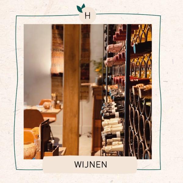 Wijnen 31